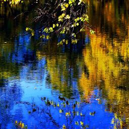 wapautumn nature freetoedit landscape interesting dpcfallcolors pcreflections reflections