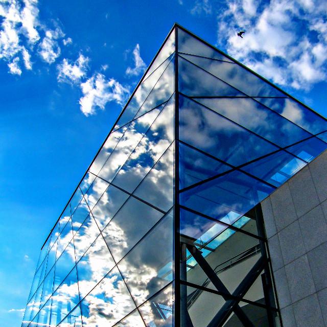 #montdesarts #reflection #glass #sky #clouds #bird #bluesky #architecture #building #belgium #belgie #brussels #square #photography #travel