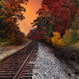 wapautumn nature traintracks photography orange