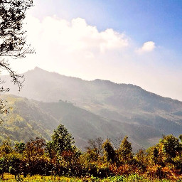cool weather natural thai thailand moutain rest relax forest