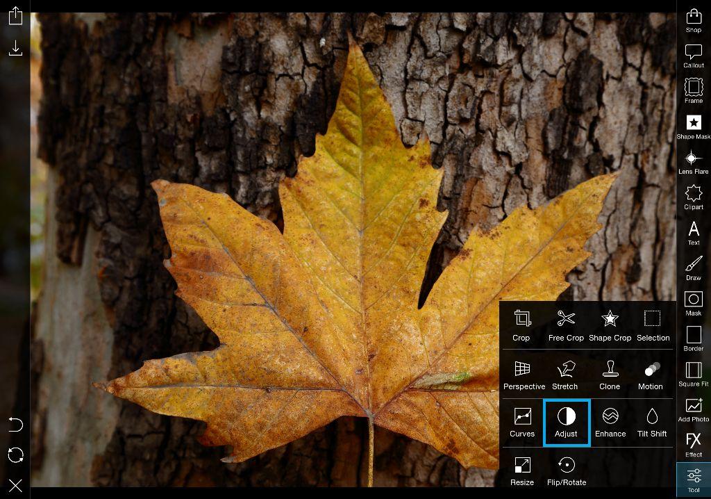 adjust tool in photo editor