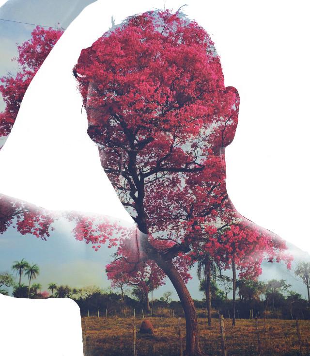 I'm simetimes Pink #love #nature #treeslove #pink #me #boy #dobleexposure #MadeWithPicsart