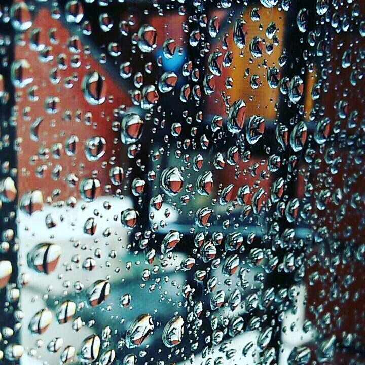 #nature #rain #drops #photography