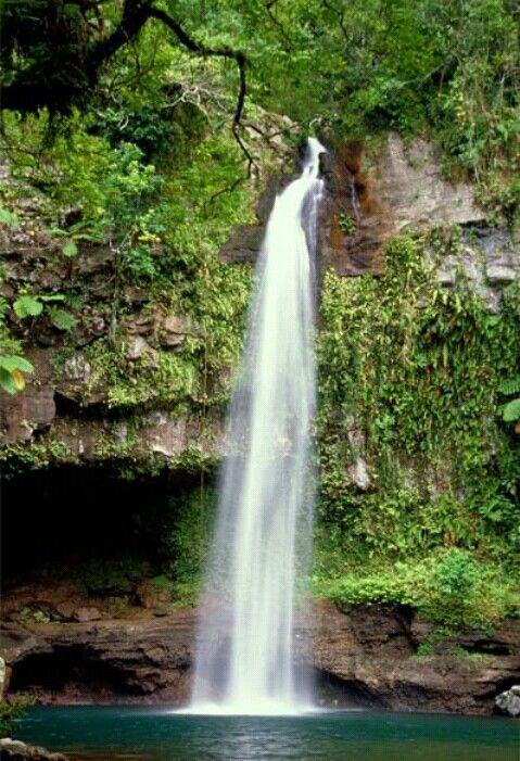 Bouma Waterfalls Fiji Nature