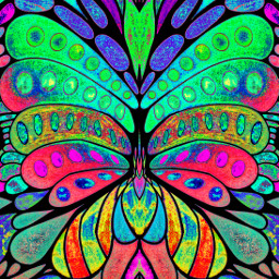 interesting art butterfly colorful coloringbooks