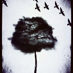 hdr nature surreal dark