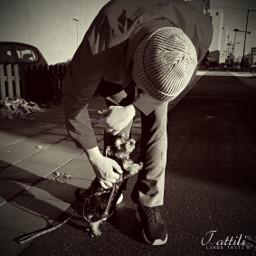 streetphotography streetphoto puppy cute bnw