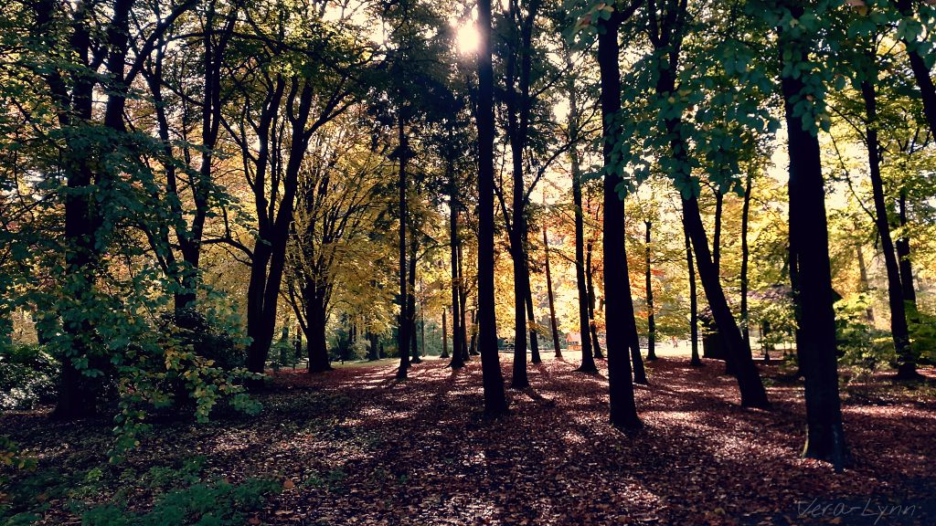 outdoor nature photography. Scenery Landscape Nature Outdoors Photography Color Vie. Outdoor