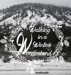 blackandwhite nature quotesandsayings snow winter