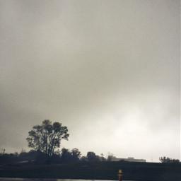 urban rainy yellow motion dodgereffect