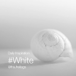 dailyinspiration white