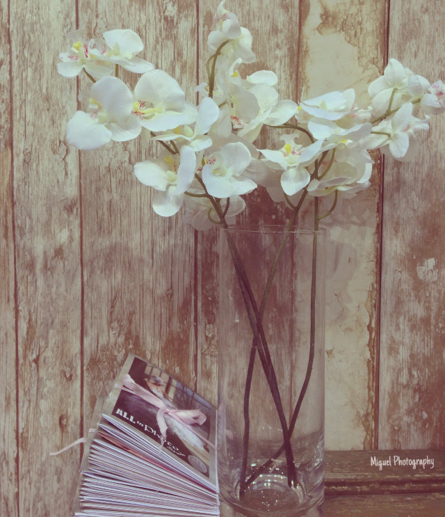 my #dailyinspiration #vintageeffect is absolutly meet our new  VINTAGE theme Wedding Photography 💎🔻🔸🔺 Great Night To you!  #interesting #vintage wedding #weddings #photography photo #flower #vintagefeel #inspiration  #international