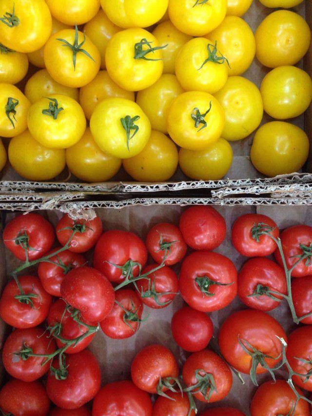 #red#yellow#tomatoes#colorful#yummy#springfeeling#art#photography