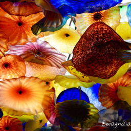 wppcolorful glassart