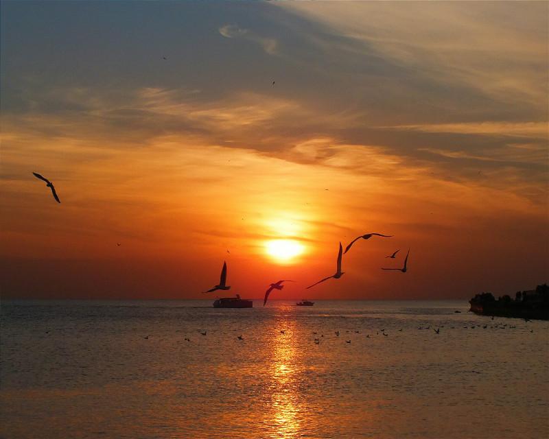 #sunset #naturelovers #nature #peace #awesome #istanbul #city #panorama #photography