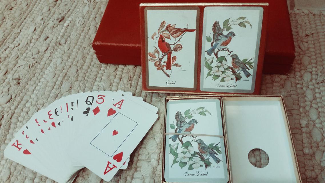 #VintageFinds #myPapa'sCardset #treasure #preciousfind  #photography  #birds #cards #2decks