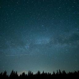 freetoedit trees tree treeline stars