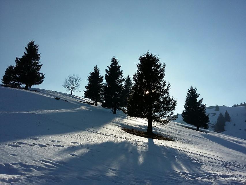 #nature  #snow