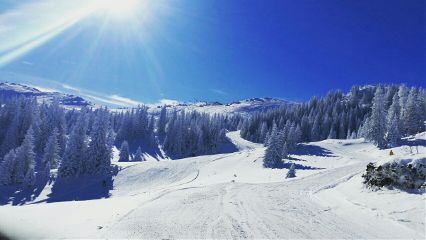 goodbye winter snow mountain ski