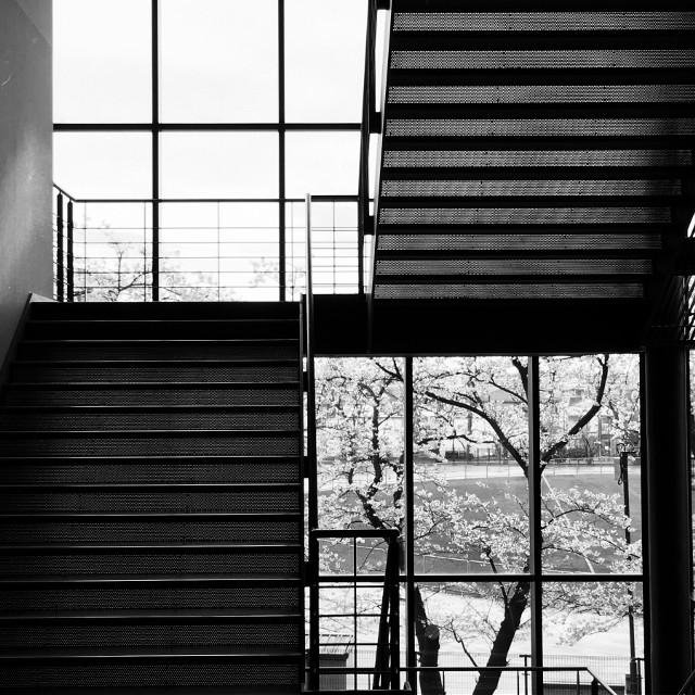 階段と窓。