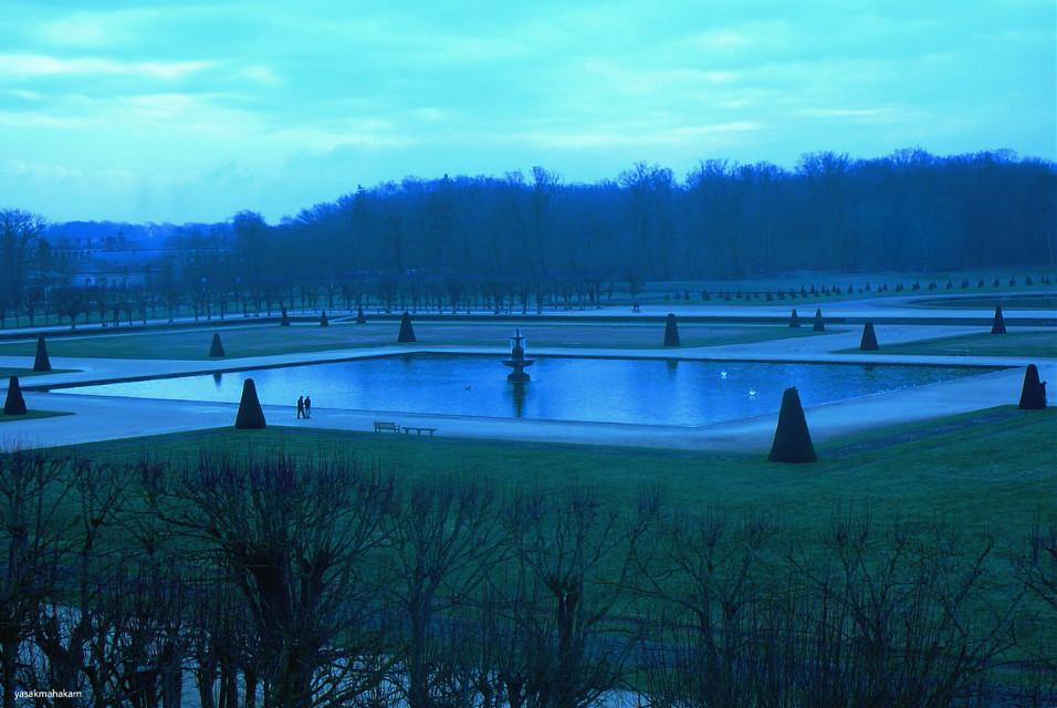 #park  #photography  #Jardins du château de Fontainebleau #nature #winter