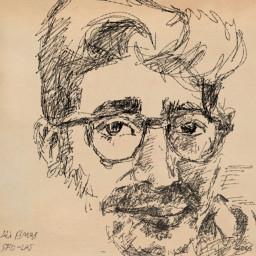 picsart portrait sketch drawing ipadpro