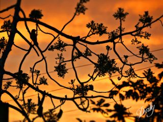 beautiful nature photography travel sunset