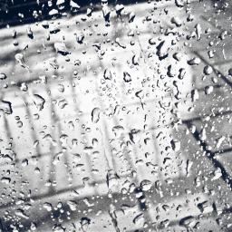 wpprain rain blackandwhite photography water