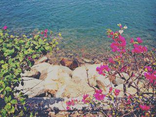 beach colorful rocks shore mexico