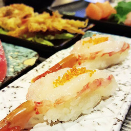 amaebi sweetshrimp nigiri