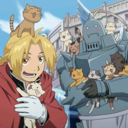 anime fullmetalalchemist edward alphonse elric