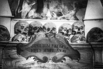 photography skull blackandwhite
