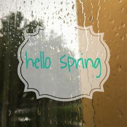 rain raindrops spring