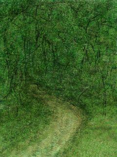 trees wdptrees
