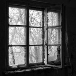 window blackandwhite lostplaces